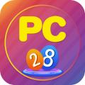 pc28(资讯阅读软件)
